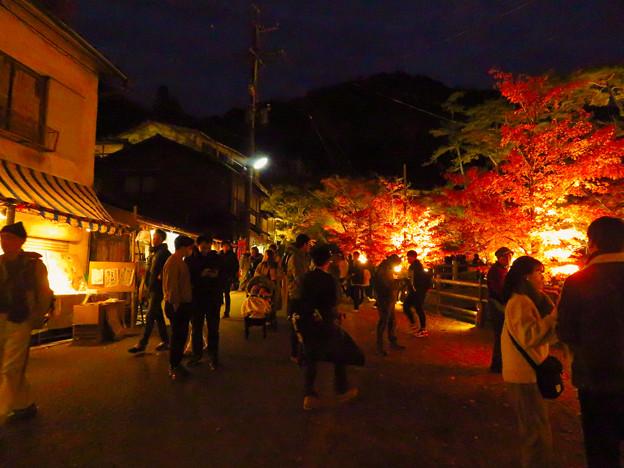 岩谷堂公園 紅葉ライトアップ(2019年11月17日)- 54