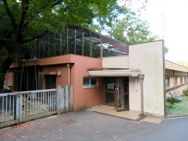 東山動植物園バードホール - 6