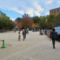 Photos: 東山動植物園こども動物園 - 2