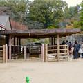 東山動植物園こども動物園 - 3
