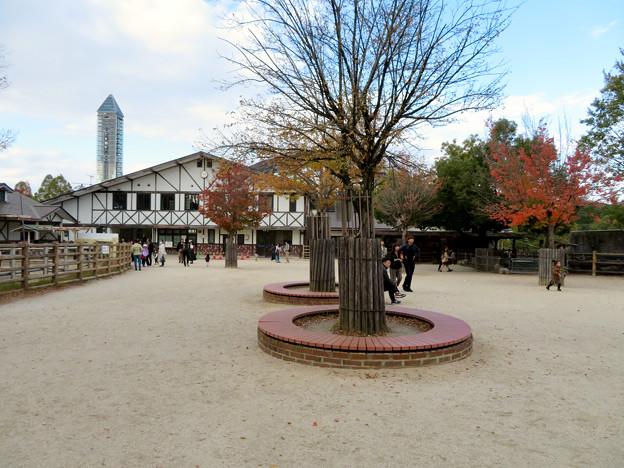 東山動植物園こども動物園 - 11