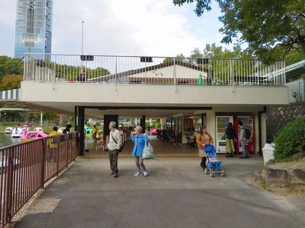 東山動植物園 上池のボートハウス - 2