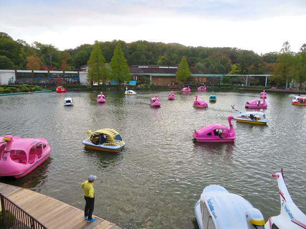 東山動植物園 上池のボートハウス - 13