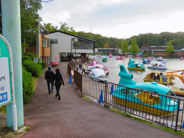 東山動植物園 上池のボートハウス - 14