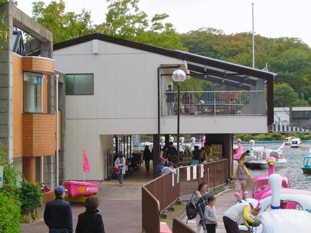 東山動植物園 上池のボートハウス - 15