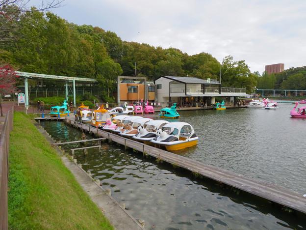 東山動植物園 上池のボートハウス - 16