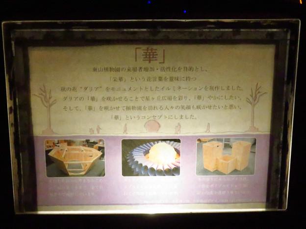東山動植物園 紅葉ライトアップ(2019年11月17日)- 20:華のイルミネーションの説明