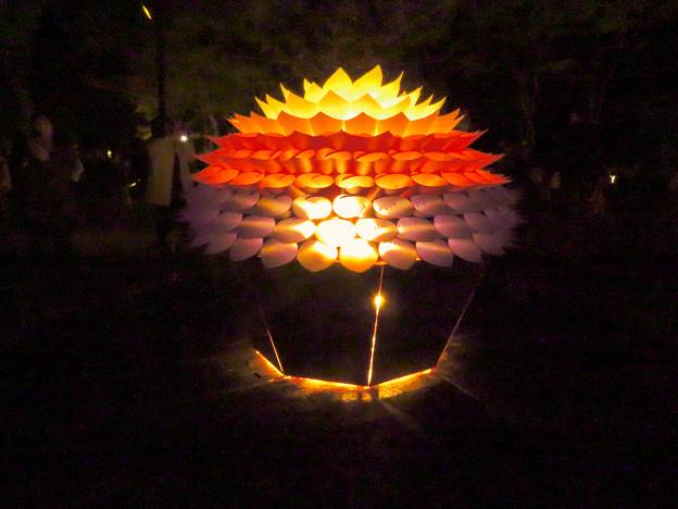 東山動植物園 紅葉ライトアップ(2019年11月17日)- 21:華のイルミネーション