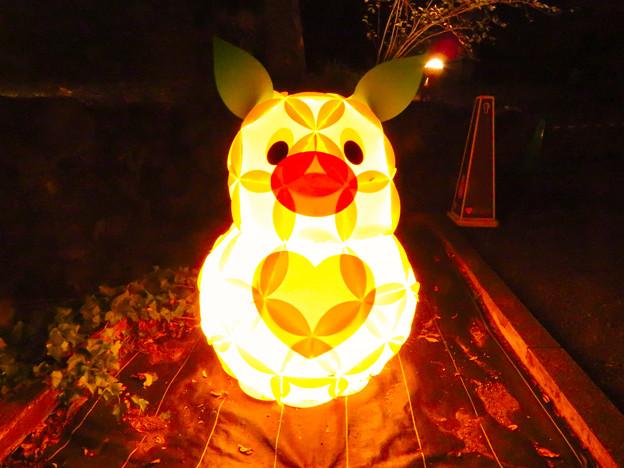 Photos: 東山動植物園 紅葉ライトアップ(2019年11月17日)- 26:ズーボのイルミネーション