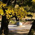 Photos: 落合公園:紅葉した木と半球型のオブジェ - 3
