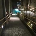 Photos: アクア・トトぎふ No - 121:3階から2階への通路