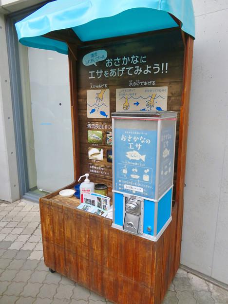 アクア・トトぎふ No - 241:魚のエサの販売ブース