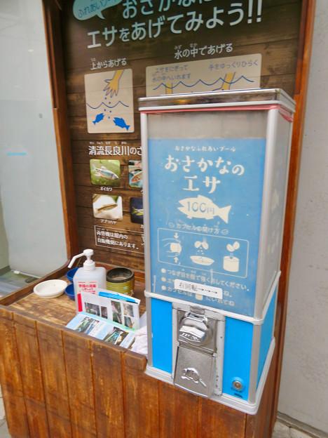 アクア・トトぎふ No - 242:魚のエサの販売ブース