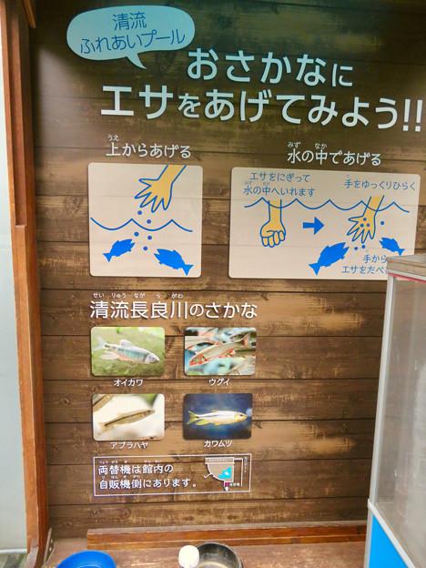 アクア・トトぎふ No - 243:魚のエサの販売ブース(エサのあげ方の説明)