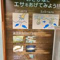 Photos: アクア・トトぎふ No - 243:魚のエサの販売ブース(エサのあげ方の説明)