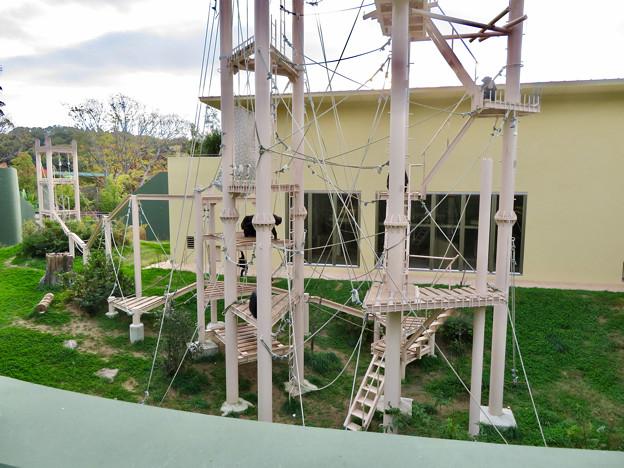 東山動植物園:珍しく外で遊んでたチンパンジー - 8