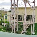 Photos: 東山動植物園:珍しく外で遊んでたチンパンジー - 8