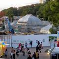Photos: 保存修理工事中の東山動植物園の温室(2019年11月16日)- 1