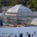 Photos: 保存修理工事中の東山動植物園の温室(2019年11月16日)- 2
