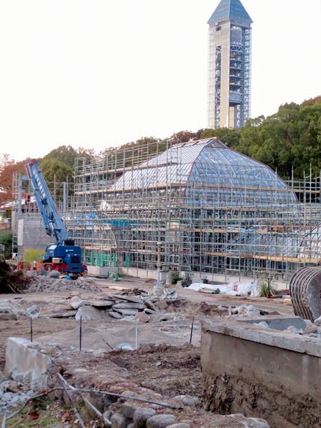 保存修理工事中の東山動植物園の温室(2019年11月16日)- 3