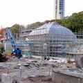 Photos: 保存修理工事中の東山動植物園の温室(2019年11月16日)- 3