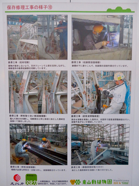 保存修理工事中の東山動植物園の温室(2019年11月16日)- 4:修理の様子