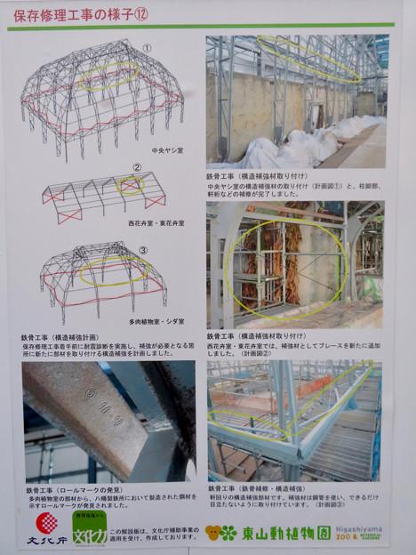 保存修理工事中の東山動植物園の温室(2019年11月16日)- 5:修理の様子