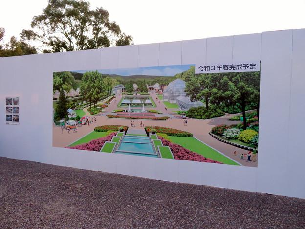 Photos: 保存修理工事中の東山動植物園の温室(2019年11月16日)- 6:2年後(2021年)に完成予定
