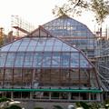 保存修理工事中の東山動植物園の温室(2019年11月16日)- 7