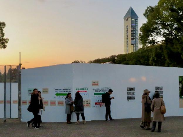 夕暮れ時の東山スカイタワーと東山植物園温室の工事現場