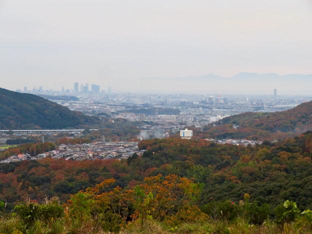 定光寺展望台から見た景色(2019年11月) - 2:名古屋方面
