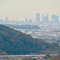 定光寺展望台から見た景色(2019年11月) - 3:名古屋市中心部