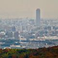 定光寺展望台から見た景色(2019年11月) - 5:ザ・シーン城北