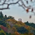 Photos: 定光寺展望台から見た景色(2019年11月) - 14:先っぽだけ見えた何かの建物