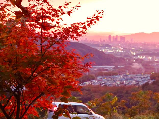 定光寺展望台から見た夕暮れ時の景色 No - 19:紅葉越しに見た景色