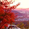 Photos: 定光寺展望台から見た夕暮れ時の景色 No - 19:紅葉越しに見た景色