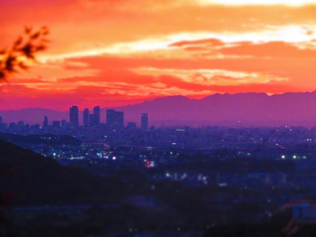 定光寺展望台から見た夕暮れ時の景色 No - 21:名駅ビル群