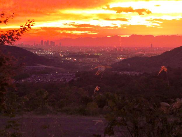 Photos: 定光寺展望台から見た夕暮れ時の景色 No - 22:名古屋方面