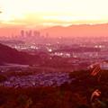 Photos: 定光寺展望台から見た夕暮れ時の景色 No - 23:名古屋方面