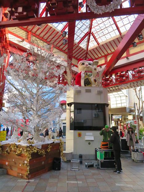 大須商店街:クリスマス装飾になってた招き猫広場の招き猫 - 1