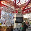 Photos: 大須商店街:クリスマス装飾になってた招き猫広場の招き猫 - 1