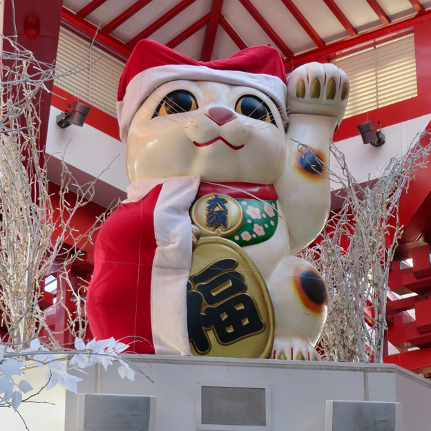 大須商店街:クリスマス装飾になってた招き猫広場の招き猫 - 2