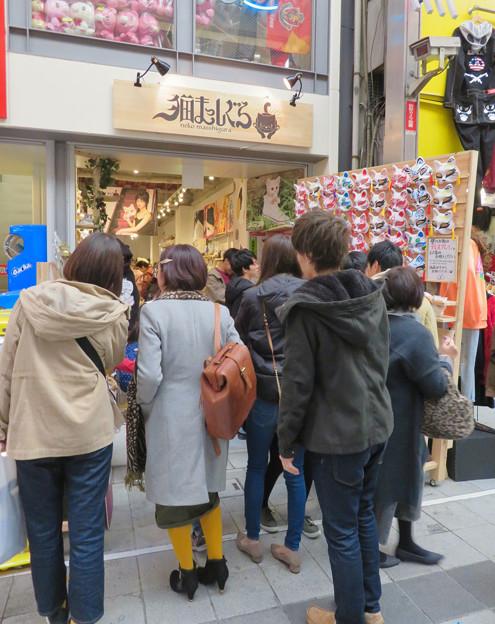Photos: 大須商店街:猫グッズ専門店「猫まっしぐら」がオープン! - 1