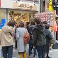 大須商店街:猫グッズ専門店「猫まっしぐら」がオープン! - 1