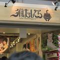 Photos: 大須商店街:猫グッズ専門店「猫まっしぐら」がオープン! - 2