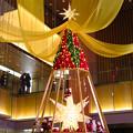 Photos: KITTE名古屋のクリスマスツリー 2019 No - 3