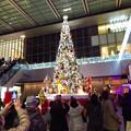 Photos: ゲートタワー前のクリスマスツリー 2019 No - 3