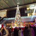Photos: ゲートタワー前のクリスマスツリー 2019 No - 4