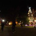 Photos: ノリタケの森のクリスマスイルミネーション 2019 No - 1