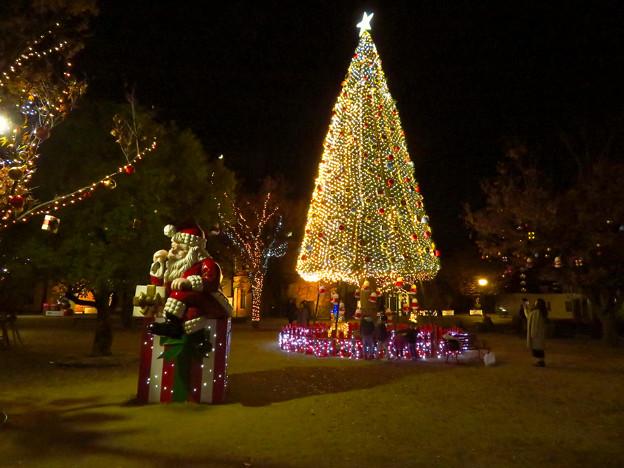 ノリタケの森のクリスマスイルミネーション 2019 No - 2